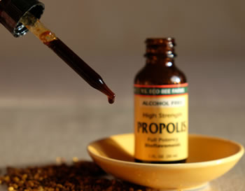 tincture of propolis without alcohol from YS Eco Bee Farms