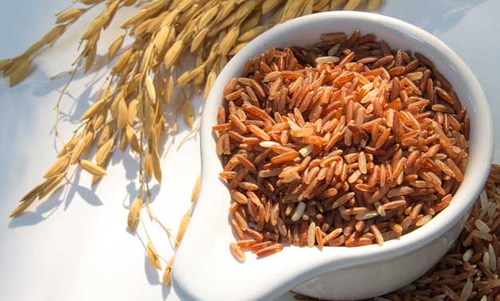 protein from brown rice